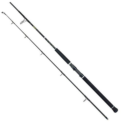 Black Cat Caña de pescar de la diversión del palillo Ii caña pesca 1164210