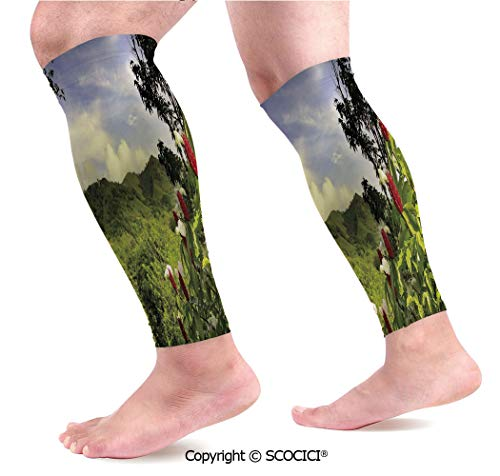 (Flexible Breathable Comfortable Leg Skin Protector Sleeve Rural Scenery Costa Rica Countryside Greenery Tropic Accents Botanical Calf Compression Sleeve)