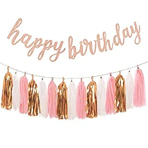 Best Epic Trends 41bZMcK5OVL._SS300_ Aonor Rose Gold Birthday Party Decorations - Glittery Rose Gold Happy Birthday Banner and Tissue Paper Tassels Garland…