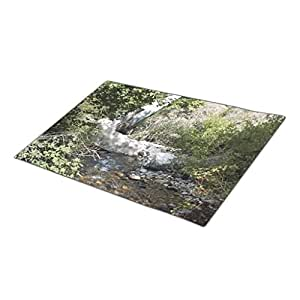 DJgirl Canyon Rocks Front Door Mat