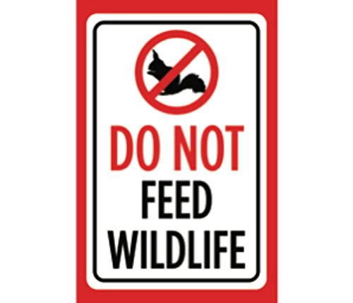 (Do Not Feed Wildlife Print White Black Red Poster Squirrel Picture Symbol Animal Notice Outdoor Business Sign)