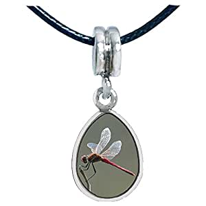 Chicforest Silver Plated Beautiful Lovely Dragonfly Photo Angel Tears Charm Beads Fits Pandora Charms