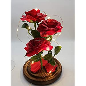 URBANSEASONS Beauty and The Beast Rose Enchanted Rose,Red Silk Rose and Led Light with Fallen Petals in Glass Dome on Wooden Base, for Valentine's Day Wedding Anniversary Mother's Day Birthday Party 4