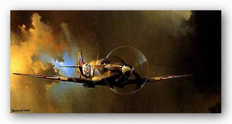 系統的差良さSpitfire by Barrie Clark 23