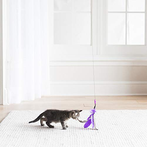 Jackson Galaxy Air Prey Cat Wand Cat Toy