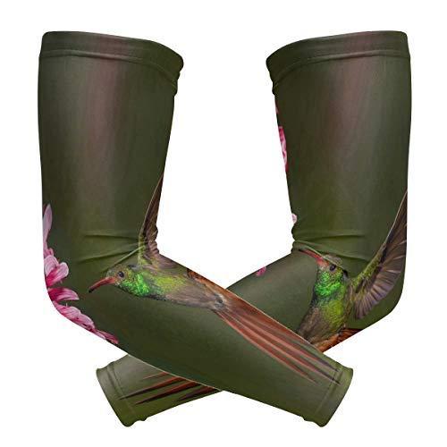 Golf Hummingbird (Cool-custom Arm Sleeves Compression Protection for Women Men Hummingbirds Pink Flower Baseball Basketball Golf Cycling Running (1 Pair))
