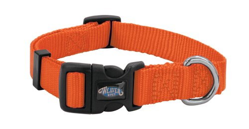 Weaver Leather Prism Snap-N-Go Collar, Large, Blaze - Collar Dog Orange