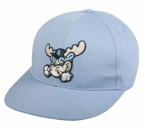 WILMINGTON BLUE ROCKS Youth Cap Minor League Officially Licensed MiLB Replica Hat