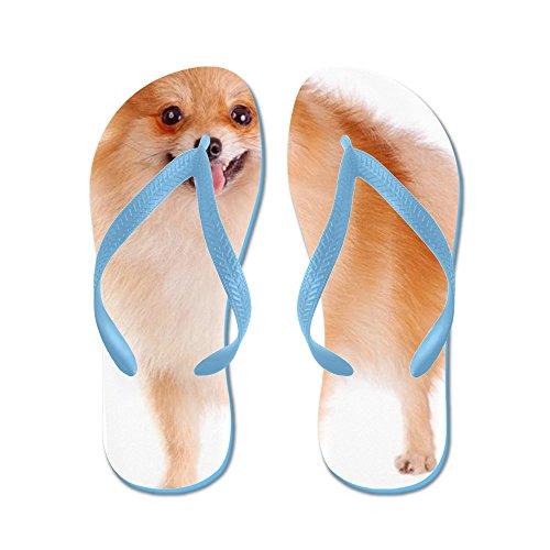 e469bd17a00 CafePress - Pomeranian Dog - Flip Flops