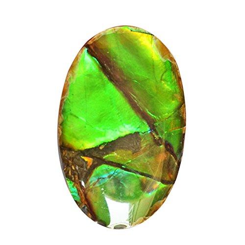 (Genuine Ammolite Green Flashy Stone, Oval Shape, Pendant Stone, Size 26X18X5 MM, Ammonites Fossilized AG-6442)