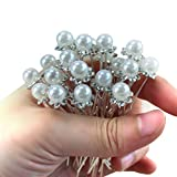 20pcs Women Wedding Bridal Pearl Clips Flower Crystal Rhinestones Hair Pins Hair Clips Bridesmaid Sliver with 1 Vintage Faux pearl U shape Headpiece Clip Gift for Prom Dance Party