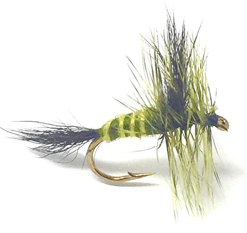 Feeder Creek Fly Fishing Trout Flies - GREEN DRAKE MAYFLY- 12 Dry Flies - 3 Size Assortment 14,16,18 (4 of Each Size) Fort Trout and Other Freshwater Fish Green Drake Flies