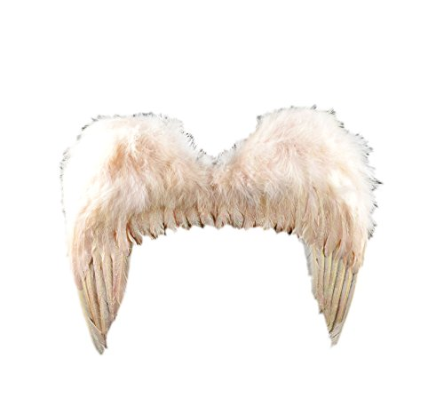 Touch of Nature 10907 Feather Angel Wing with Halo Set, Rose Dust Glitter 18 X 15-Inch (Angel Halo Costume)