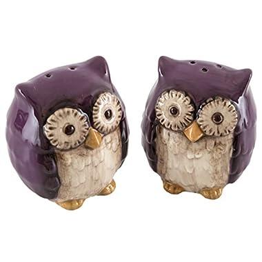 Grasslands Road Crimson Hollow Owl Salt & Pepper Shakers Set, Purple
