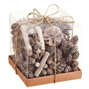 Assorted Pinecones, Acorns and Twigs Whitewashed In Acetate Gift Box 6 Inches x 6 Inches x 6 Inches (Pine Cone Vase)