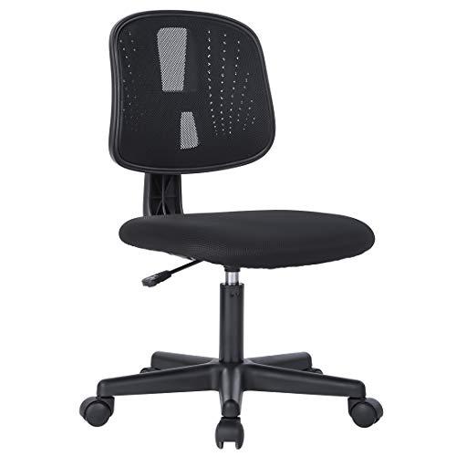 Novelland Ergonomic Adjustable Back Office Swivel Task Chair, Breathable Mesh Chair