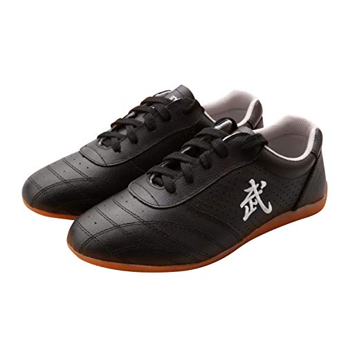 BJSFXDKJYXGS Chinese Wushu Shoes taolu Kungfu Martial Shoes Taichi Shoes for Men Women Fashion Sneakers (US9.5//EUR44//27CM, Black Ventilate)