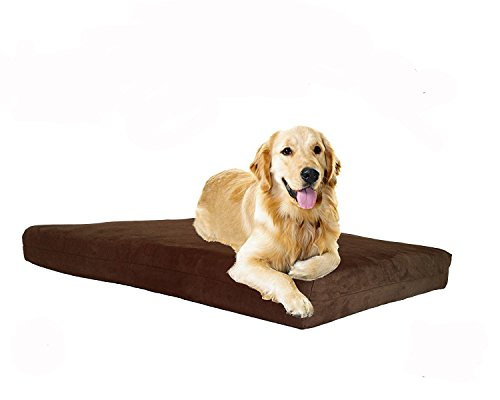 Pet Support Systems Washable Orthopedic Memory Foam Dog Bed, Small, 22-Inch x 16-Inch x 4-Inch, Chocolate (Plush Microsuede)