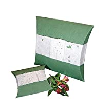 Fern Biodegradable Cremation Urn - Mulberry Paper