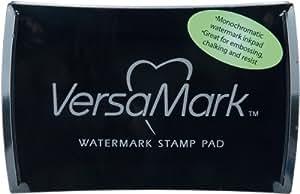 Tsukineko VM000001 Full-Size VersaMark Pigment Inkpad, 3-Inch X 2-Inch, Clear