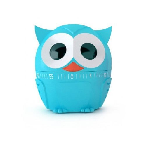 Kikkerland Owlet Kitchen Timer - Blue by Kikkerland