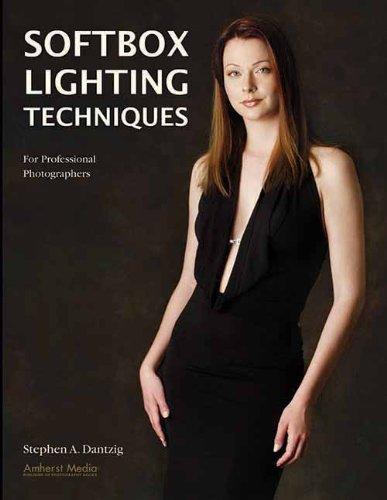 Michigan Lighting (Softbox Lighting Techniques: For Professional Photographers)
