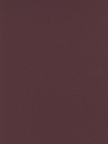 Canson Mi-Teintes Mat Board burgundy 16 in. x 20 in. [PACK OF 5 ()