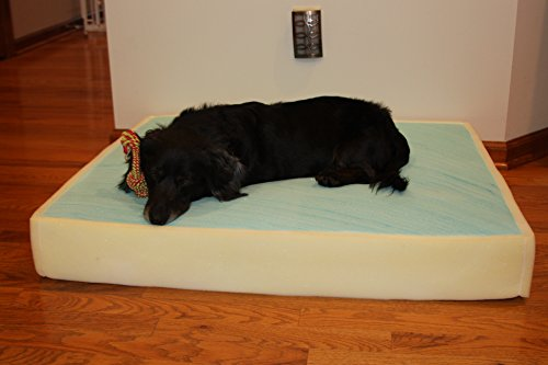 Memory Foam Dog Pet Bed Mattress Core with Gel, Small Size L18xW24xH4 inches Made in USA