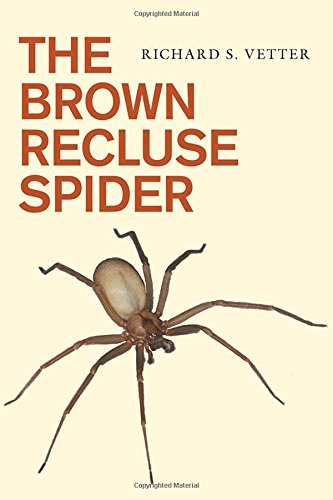 The Brown Recluse Spider - Spider Recluse