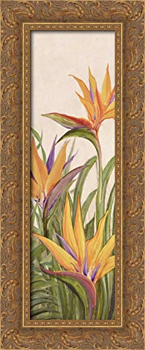 Bird of Paradise Panel II 11x24 Gold Ornate Wood Framed Canvas Art by Diannart