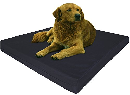 Dogbed4less Extra Large Orthopedic Gel Infused Memory Foam Dog Bed, Waterproof Liner with Durable Canvas Cover, 47X29X4 Inch, Black (Fit 48X30 crate) by Dogbed4less