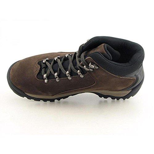 Timberland Men's Classic Hiking Trail Seeker