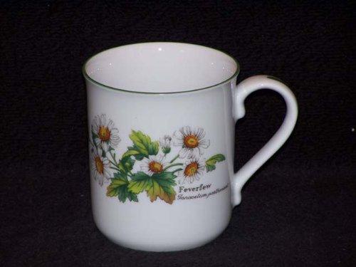 Royal Worcester Worcester Herbs Coffee Mug(s) Fever ()