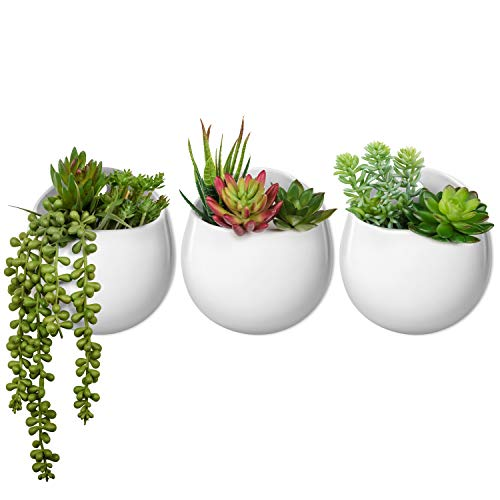 (Mkono Wall Planter with Artificial Plants, Decorative Potted Fake Succulents Picks Assorted Faux Succulent in Modern Ceramic Hanging Plant Pot Vase for Home Decor, Set of 3)