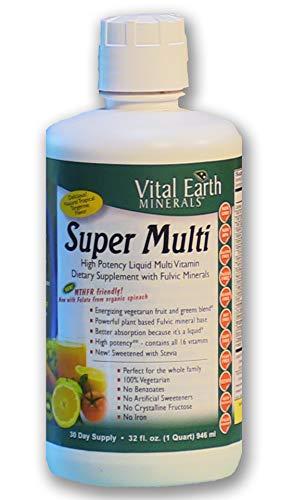 Vital Earth Minerals Super Multi Liquid Vitamins 32 Fl. Oz. – 1 Month Supply- High Potency – MTHFR Friendly- Vegetarian…