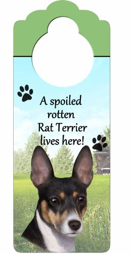 "Rat Terrier Wood Sign ""A Spoiled Rotten Rat Terrier Lives Here""with Artistic Photograph Measuring 10 by 4 Inches Can Be Hung On Doorknobs Or Anywhere In Home"
