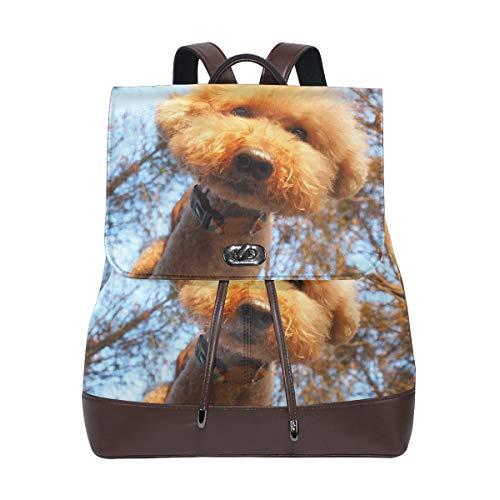 Backpack, Travel Bag, School Bag, Shopping Bag, Storage Bag For Men Women Girls Boys Personalized Pattern Dogs Poodle Glance ()
