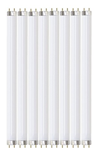 Pack of 8 F32T8/865 32 watt 48'' Straight F32 T8 Medium Bi-Pin (G13) Base, 6,500K Daylight Octron Fluorescent Tube Light Bulb by Sterl Lighting