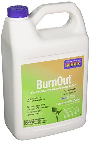 bonide-burn-out-weed-and-grass-concentrate-killer-1-gallon