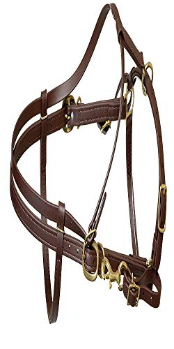 Endurance Bridle - Berlin Custom Leather Beta Endurance Halter Bridle - Brown, Horse
