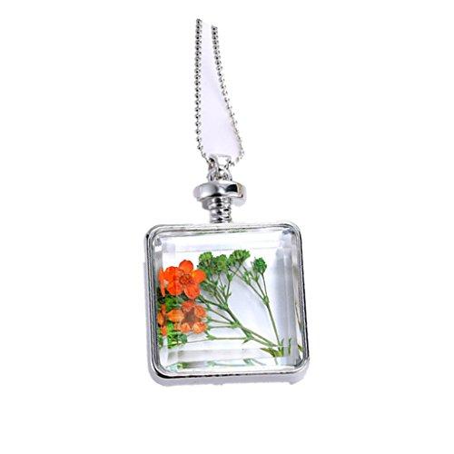 Vidrio Botella Cuadrada De Naranja Seca Collar De Cadena De Plata Flor Verde Flotante: Amazon.es: Joyería