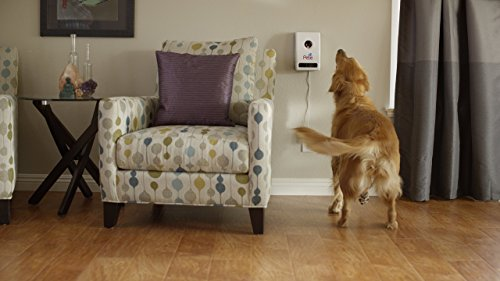 Petzi Treat Cam: Wi-Fi Pet Camera & Treat Dispenser