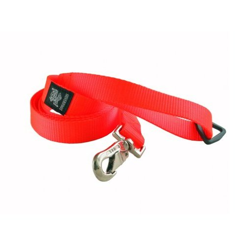 Silverfoot The Hunter Dog Leash