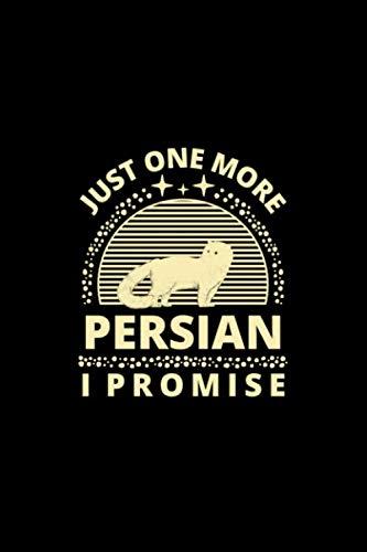 Best promise pets persian kitty list