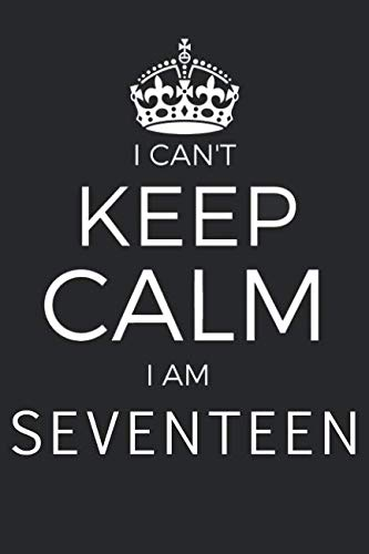 I Can't Keep Calm I Am Seventeen: Blank Lined Journal, Notebook, Diary, Planner Happy Birthday 17 Years Old Gift For Boys And Girls