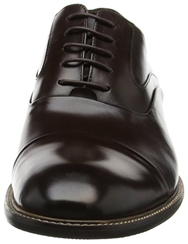 Radius Scarpe Uomo Leather Brown Oxford Marrone Stringate Bertie w45qdv4