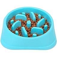 NOYAL Dog Slow Feeder Bowl, Non Slip Puzzle Bowl - Anti-Gulping Pet Slower Food Feeding Dishes - Interactive Bloat Stop Dog Bowls - Durable Preventing Choking Healthy Design Dogs Bowl