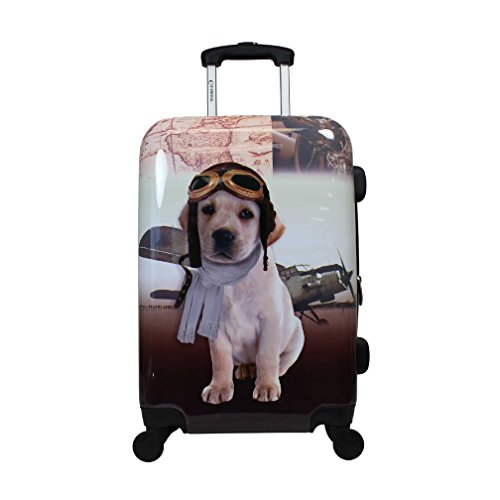 Cute Doggie Pilot Motif Expandable Locking Lightweight Luggage Suitcase, Fun Graphic Animal Print Theme, Hardsided, Hardshell, Multi Compartment, Fashionable Handle Travel Case, Brown, Ivory, Size 20'' by S & E