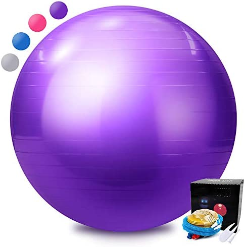 Topmat Exercise Ball,Professional Yoga Fitness Balance Ball Air Chair,Anti-Burst Heavy Duty Stability Ball,Supports Over 2200lbs Stability 55cm