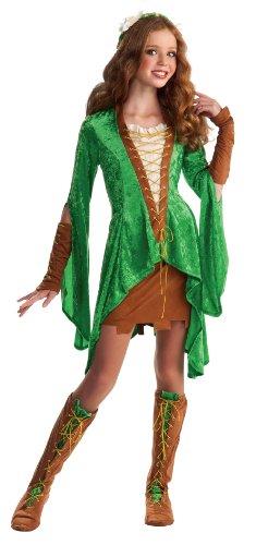 Drama Queens Tween Maid Marion Costume - Tween Medium (2- 4) -
